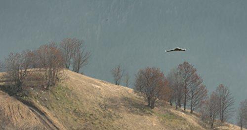 Parrot-DISCO-FPV-Drone-aile-volante--voilure-fixe-livr-avec-Skycontroller-2-WiFi-et-lunettes-FPV-0-7